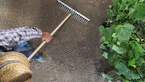 Sirva al granjero que trabaja con el rastrillo en el huerto, rastrillando el suelo cerca de una planta del pepino, la visión supe almacen de metraje de vídeo