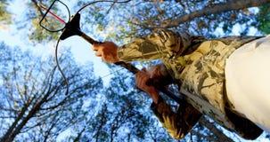 Sirva apuntar con el arco compuesto en el bosque 4k metrajes