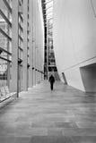 Sirva caminar en el interior de Charles Darwin Center en el natural Fotografía de archivo libre de regalías
