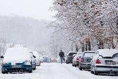 Sirva caminar en un camino helado durante nevada Fotografía de archivo libre de regalías