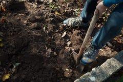 Sirva desarraigar verduras en un jardín, sus piernas y una espada en foco Imagenes de archivo