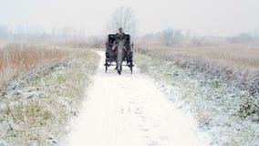 Sirva el carro del caballo del montar a caballo uno en el camino del invierno metrajes