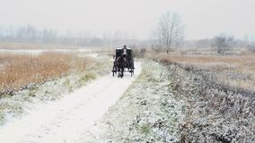Sirva el carro del caballo del montar a caballo uno en el camino del invierno almacen de video