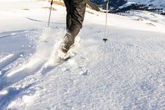 Sirva el funcionamiento cuesta abajo a través de nieve profunda con los snoeshoes y los palillos el caminar fotografía de archivo