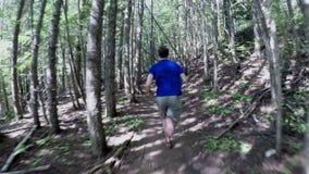 Sirva el funcionamiento en el bosque en un día soleado 4k metrajes