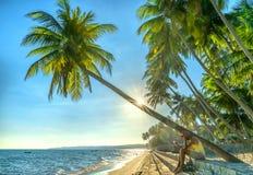Sirva el libro de lectura que se sienta al lado de las palmeras del coco en la playa tropical fotos de archivo libres de regalías