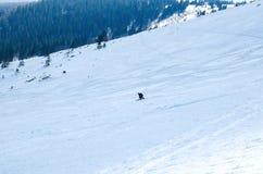 Sirva el pase gratis del esquí cuesta abajo en la estación del invierno en sombra en día soleado hermoso Imagen de archivo libre de regalías