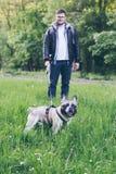 Sirva el paseo con el dogo francés en parque de la ciudad foto de archivo