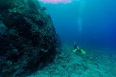 Sirva el salto a lo largo del submarino del arrecife de coral en la KOH tao, Tailandia Imagen de archivo libre de regalías