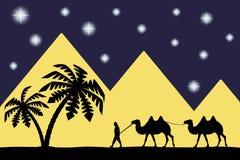 Sirva en el camello las pirámides. Imagenes de archivo