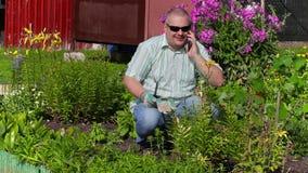 Sirva hablar en el teléfono en jardín cerca de las flores almacen de video