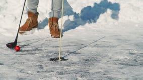 Sirva jugar a golf en el río congelado en naturaleza en invierno al aire libre almacen de video