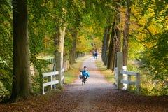 Sirva la bicicleta reclinada que monta en otoño, Países Bajos Imagen de archivo libre de regalías