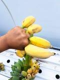 Sirva la mano del ` s que sostiene algunos plátanos maduros Fotos de archivo libres de regalías