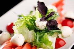 Sirva la mezcla de ensalada con los tomates y la mozzarella fotos de archivo