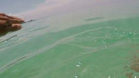Sirva la natación en el mar con punto de vista del agua de la cámara de la acción almacen de video