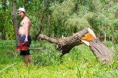 Sirva la situación al lado de un árbol derribado con una motosierra Imagen de archivo