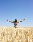 Sirva la tapa del mundo en campo de trigo Imagenes de archivo