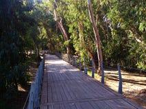 Sirva las estructuras hechas para la gente que camina y de ciclo en el parque linear imagenes de archivo