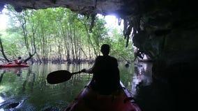 sirva las filas kayak fuera de gruta en la madera del mangle metrajes