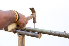 Sirva los clavos de las manos con el martillo en de madera al aire libre haciendo una cerca Fotografía de archivo