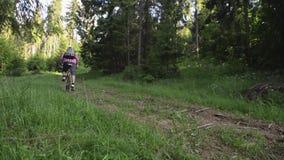 Sirva montar una bici de montaña en el bosque almacen de metraje de vídeo