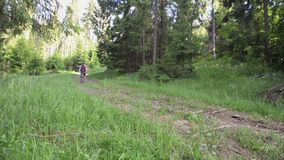 Sirva montar una bici de montaña en el bosque almacen de video