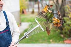 Sirva sostener el rastrillo con las hojas de otoño en la yarda foto de archivo libre de regalías