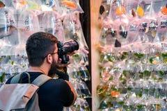 Sirva tomar una foto en el mercado del pez de colores en Hong Kong fotografía de archivo libre de regalías