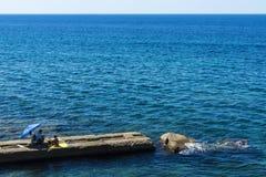 Sirva y una mujer que se sienta en una pared de piedra en el mar Imagen de archivo