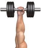 Sirve elevaciones de la mano una pesa de gimnasia fotografía de archivo libre de regalías