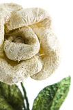 Sisal flower. Flower made with sisal (agave fiber royalty free stock photos