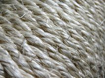Sisal rope. On the cat straching post stock images