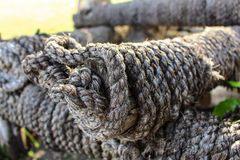 Sisal rope Royalty Free Stock Images
