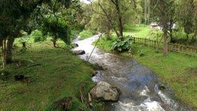 Sisga park narodowy, cundinamarca Kolumbia Obrazy Stock