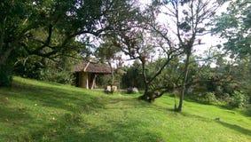 Sisga park narodowy, cundinamarca Kolumbia Fotografia Royalty Free