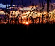 Sista ögonblick av solen Arkivfoton
