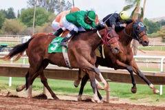 Sista hästkapplöpningar i Arizona till nedgång Royaltyfri Foto