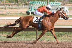 Sista hästkapplöpningar i Arizona till nedgång arkivbilder