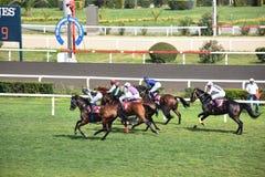 Sista jockey och häst i loppspringen in mot mållinjen royaltyfria bilder