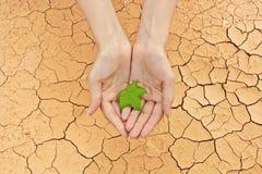 sista leaf för hope Royaltyfria Foton
