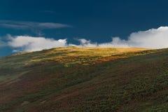 Sista ljus av dagen som fångar toppmötet av kullen, höst, nedgång Arkivfoto