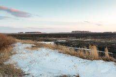 Sista snö på fältet Royaltyfri Fotografi