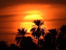 Sista solnedgång 2016 Arkivfoton
