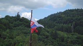Sistani flaga trzepocze w wiatrze zbiory