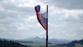 Sistani flaga trzepocze w wiatrze zdjęcie wideo