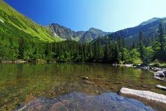 Sistani halny jezioro - Rohacske plesa, Zachodni Tatras zdjęcia stock
