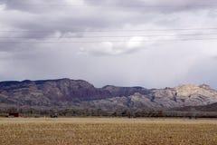 Sistem di irrigazione per il campo di grano Immagini Stock Libere da Diritti