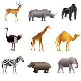 Sistema africano del vector de los animales Foto de archivo