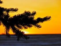Sistema anaranjado del sol Fotos de archivo libres de regalías